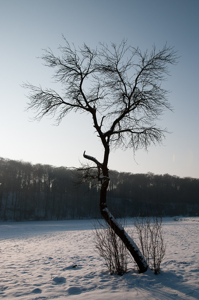 Haxtergrund im Winter
